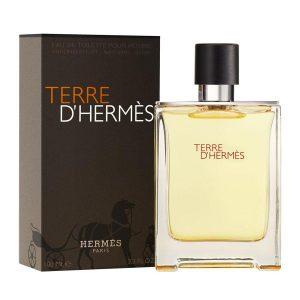 TERRE D' HERMES EDT 100 ML